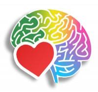 Le Cerveau a-t-il un coeur