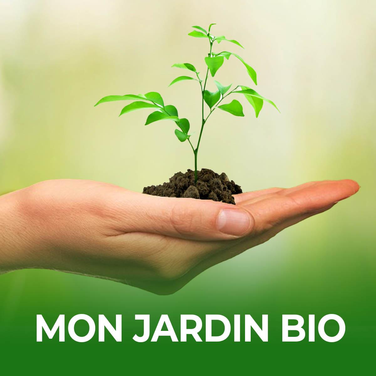 Jardins Plantes